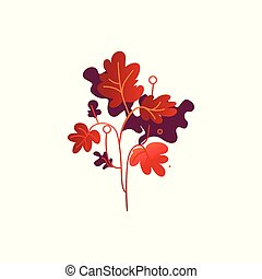 feuilles, isolé, arrière-plan., branche, automne, blanc rouge