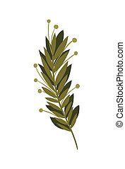 feuilles, isolé, branche, icône