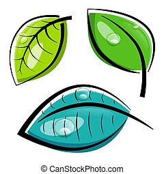 feuilles, isolé, illustration, vecteur, fond, blanc