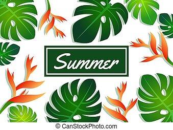 feuilles, modèle, bannière, jabot, crabe, moderne, été, étiquette, vente, offre, mode, conception, fleur, philodendron