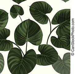 feuilles, modèle, exotique