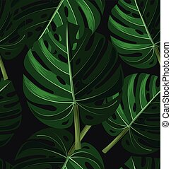 usine tropicale feuilles monstera clipart vectoris recherchez illustrations dessins. Black Bedroom Furniture Sets. Home Design Ideas