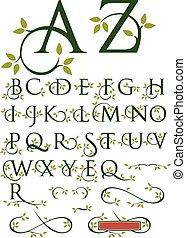 feuilles, orné, alphabet, swash