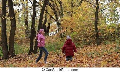feuilles, parc, automne, frères soeurs, jouer, érable