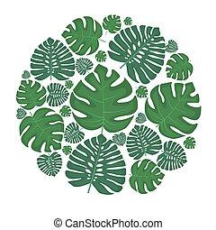 feuilles paume, vert