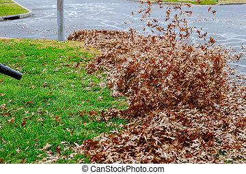feuilles, râteau, automne, trottoir, ratisser, automne, balai