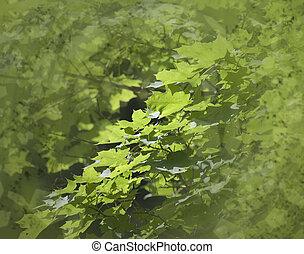 feuilles, résumé, fond
