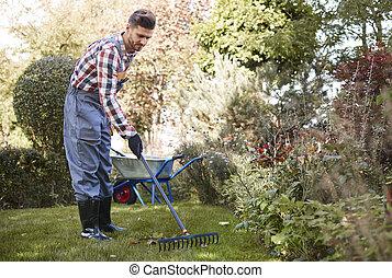 feuilles, ratisser, jardin, jardinier