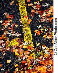 feuilles, route, automne