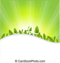 feuilles, sunburst, vert