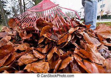 feuilles, tas