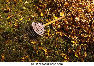 feuilles, tas, rake., automne