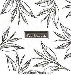 feuilles thé, conception, template.