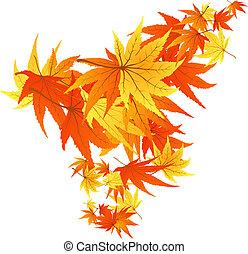 feuilles, tordu