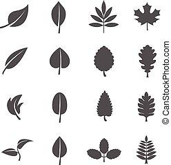 feuilles, vecteur, ensemble, icônes