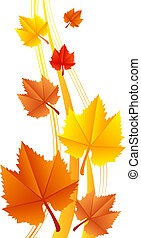 feuilles, vecteur, illustration
