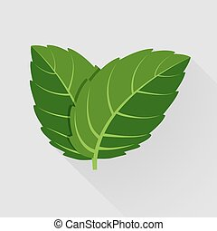 feuilles, vecteur, menthe