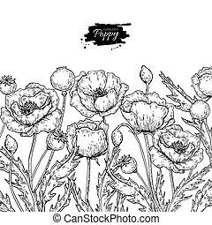 feuilles, vecteur, plante, bouquet, pavot, dessin, isolé, set., fleur, sauvage