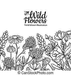 feuilles, vecteur, usines, dessin, pré, isolé, fleurs, set., sauvage