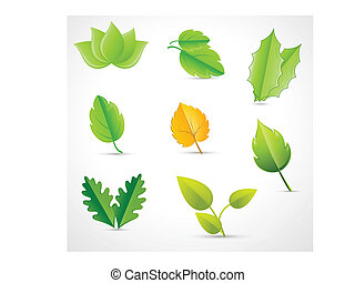 feuilles, vectors
