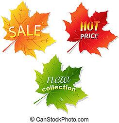 feuilles, vente, collection