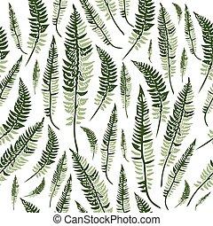 feuilles, vert, fougère