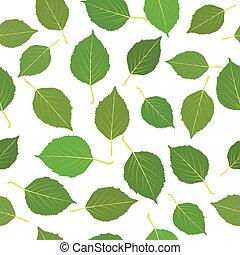 feuilles, vert, seamless, bouleau