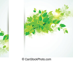 feuilles, vert