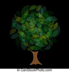 feuilles vertes, arbre, nuances