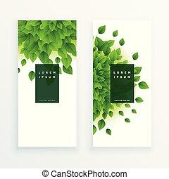 feuilles vertes, bannière, vertical, fond