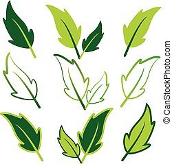 feuilles vertes, ensemble, art, agrafe