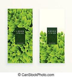 feuilles vertes, ensemble, bannière
