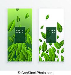 feuilles vertes, mettez stylique, carte