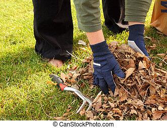 feuilles, yard, haut, nettoyage