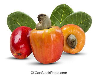few cashew over a  white background. Fresh fruit