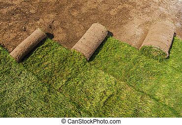 Roll of Natural Grass Turfs Rolls