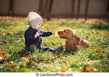 fiú ül, fű, noha, egy, kutya