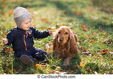 fiú, fű, kutya, ülés