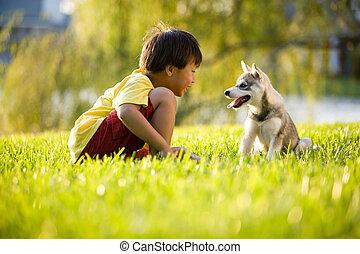 fiú, kutyus, fiatal, ázsiai, fű, játék