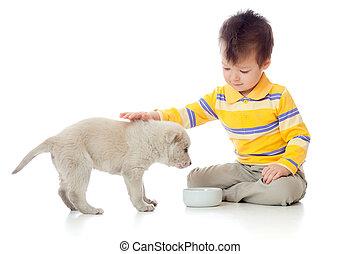 fiú, kutyus, imádnivaló, játék