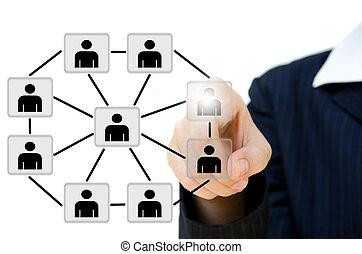 fiatal, ügy, rámenős, társadalmi, hálózat, szerkezet, alatt, egy, whiteboard.
