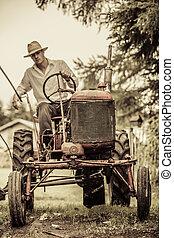 fiatal, farmer, képben látható, egy, szüret, traktor