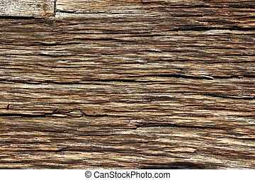 fibers on old oak wood