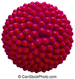 Fibonacci Sequence, Seed Cluster or Candy Concept - This is...