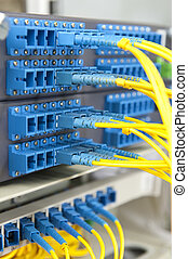 fibra, óptico, rede, cabos, painel remendo, e, interruptor