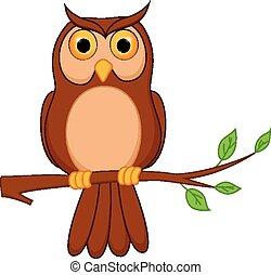ficar, coruja, árvore, caricatura