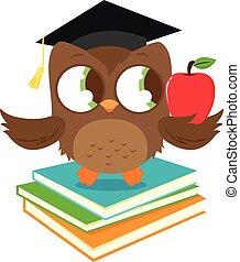 ficar, coruja, books., graduação, vetorial, ilustração, ...