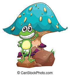 ficar, gigante, cogumelo, rã, abaixo, acima, rocha