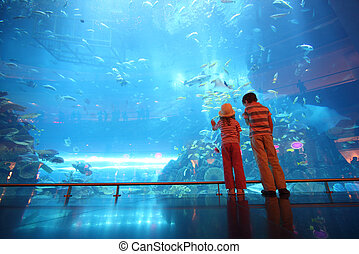 ficar, menino, pequeno, túnel, submarinas, costas, aquário, menina, vista