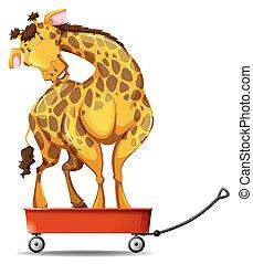 ficar, pequeno, girafa, vagão